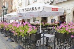 Fleurs roses aux terrasses de restaurant image libre de droits