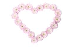 Fleurs roses dans une forme de coeur Images libres de droits