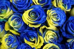 Fleurs roses de la Suède Photos libres de droits
