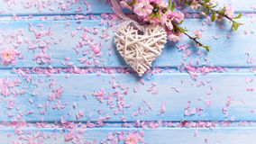 Fleurs roses de Sakura et coeur décoratif blanc sur en bois bleu Photographie stock