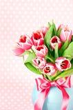 Fleurs roses de tulipe de source photographie stock libre de droits