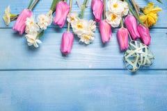 Fleurs roses de tulipes et coeur décoratif sur le backgro en bois bleu Photo stock