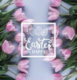 Fleurs roses de tulipes sur le fond bleu Vue supérieure Texte heureux de carte de Pâques image stock