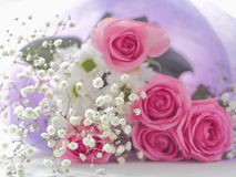 Fleurs roses et blanches Photographie stock
