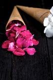 Fleurs roses et blanches dans le cornet de crème glacée sur le fond noir Images stock