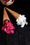 Fleurs roses et blanches dans le cornet de crème glacée sur le fond noir Photo stock