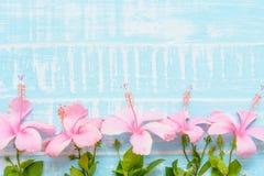 Fleurs roses et blanches sur un fond en bois bleu lumineux en pastel Images libres de droits