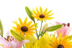 Fleurs roses et jaunes Photo libre de droits