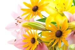 Fleurs roses et jaunes Photographie stock