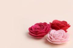 Fleurs roses et rouges mignonnes sur un fond crème images stock