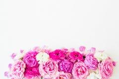 Fleurs roses - roses, pivoines et ranunculus sur le fond blanc Composition florale Configuration plate, vue supérieure Image stock