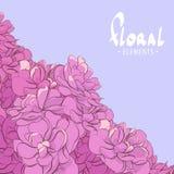 Fleurs roses sur un fond lilas Photographie stock libre de droits