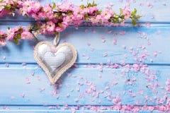 Fleurs roses tendres de Sakura et coeur décoratif sur en bois bleu Photographie stock libre de droits