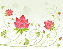 Fleurs rouges avec des baies Photos libres de droits