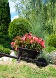 Fleurs rouges dans le jardin sur un petit chariot en bois décoratif Photographie stock