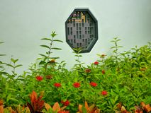 Fleurs rouges en parc Photos libres de droits