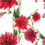 Fleurs rouges - modèle sans couture Fleurs - composition décorative watercolor Employez les matériaux imprimés, signes, articles, illustration de vecteur