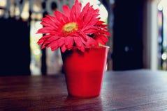 Fleurs rouges sur la table images stock