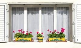 Fleurs rouges sur les rebords de fenêtre blancs Photo stock