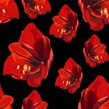 Fleurs rouges tropicales de lis, fond de noir de cru Configuration sans joint florale illustration stock