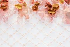 Fleurs sèches avec la dentelle rose comme fond avec l'espace Image stock