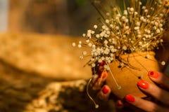 Fleurs sèches dans un bac Cadeau pour les vacances Photos libres de droits