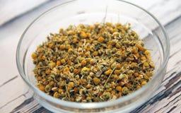 Fleurs sèches de camomille organique Photographie stock libre de droits