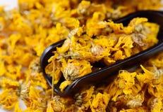 Fleurs sèches de chrysanthème pour faire le thé Photo libre de droits