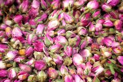 Fleurs sèches de ketmie Image stock