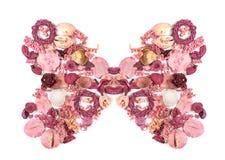 Fleurs sèches disposées pour former un papillon Photographie stock libre de droits