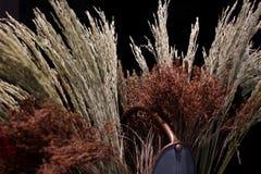 Fleurs sèches et bouquet sec de riz dans le pot de fleurs Photo libre de droits