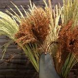 Fleurs sèches et bouquet sec de riz dans le pot de fleurs Images stock