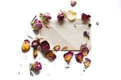 Fleurs sèches et une page de papier blanche photo stock