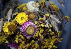 fleurs sèches multicolores dans un bouquet images stock