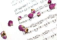 Fleurs sèches sur les notes Photographie stock
