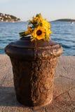 Fleurs s'étendant sur un support de la colle. Photographie stock libre de droits
