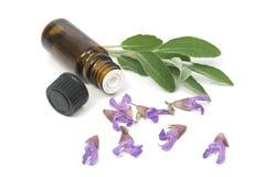 Fleurs sages et bouteille d'huile essentielle Image stock