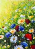 fleurs sauvages colorées modernes de peinture de fleur photo stock