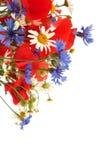 Fleurs sauvages d'été Photographie stock