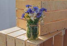 Fleurs sauvages dans un pot en verre Images libres de droits