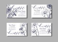 Fleurs sauvages de floraison florales de calibre de carte de visite professionnelle de visite ou de visite, marguerites, bleuets, Images libres de droits