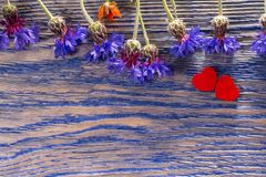 Fleurs sauvages et coeur sur le bois Photo libre de droits
