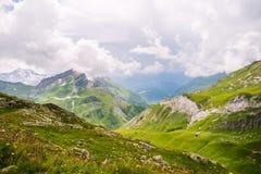 Fleurs sauvages et paysage de montagne avec l'abri et le lac dans photo stock