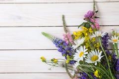 Fleurs sauvages sur la vieille camomille en bois grunge d de loup de fond Photos libres de droits