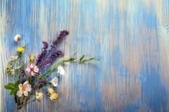 Fleurs sauvages sur la vieille camomille en bois grunge de fond de loup Images stock
