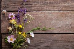 Fleurs sauvages sur la vieille camomille en bois grunge de fond de loup Photos stock