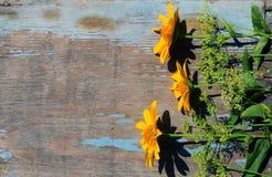 Fleurs sauvages sur une table en bois image stock