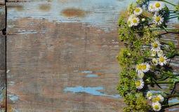 Fleurs sauvages sur une table en bois images libres de droits
