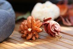 Fleurs sèches aromatiques Photographie stock