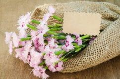 Fleurs sensibles et carte de voeux vide Image libre de droits